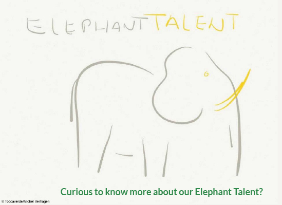 Curious to know more about our Elephant Talent? - (c) Michel Verhagen
